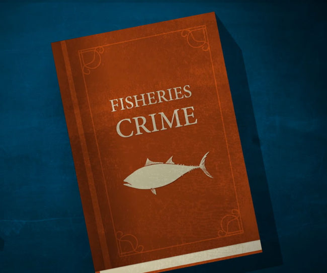 Thinkteam Fishcrime Film
